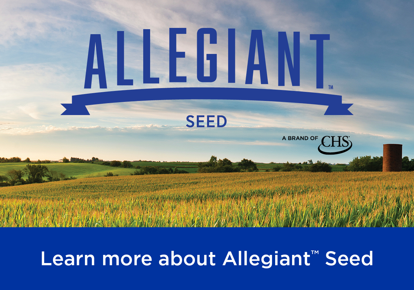 Allegiant Seed, a brand of CHS