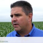 advice for growers from John Laffey