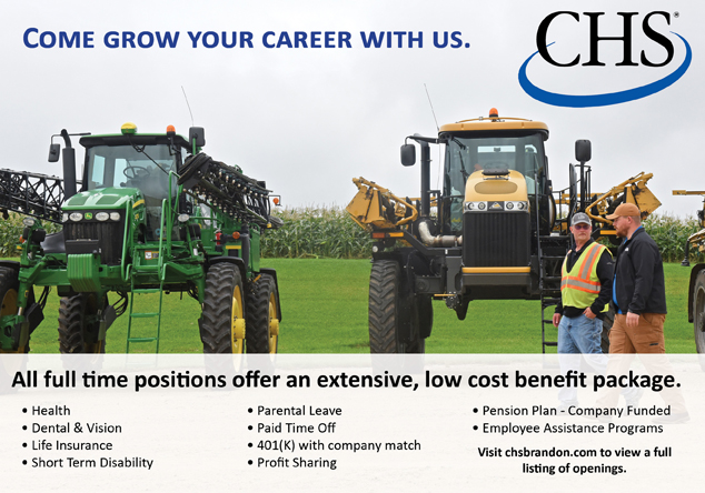 Grow Your Career with Us